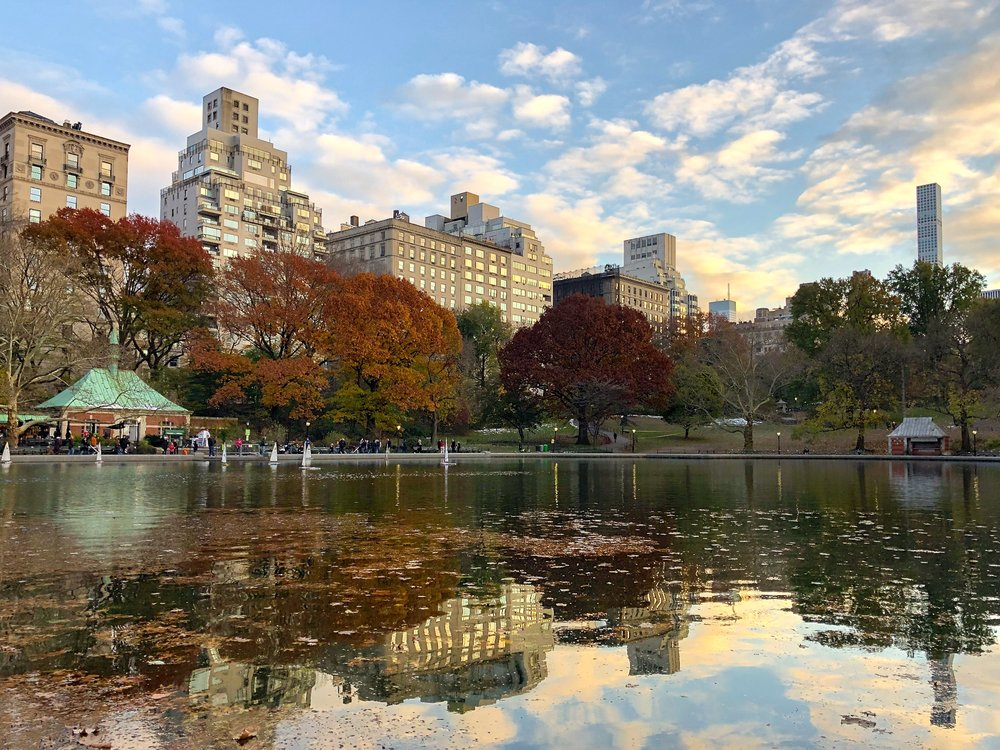 @ Conservatory water_autumn trees_Central Park_11.17.18_Photo © 2018 Joseph Kellard:kellardmedia.com.jpg