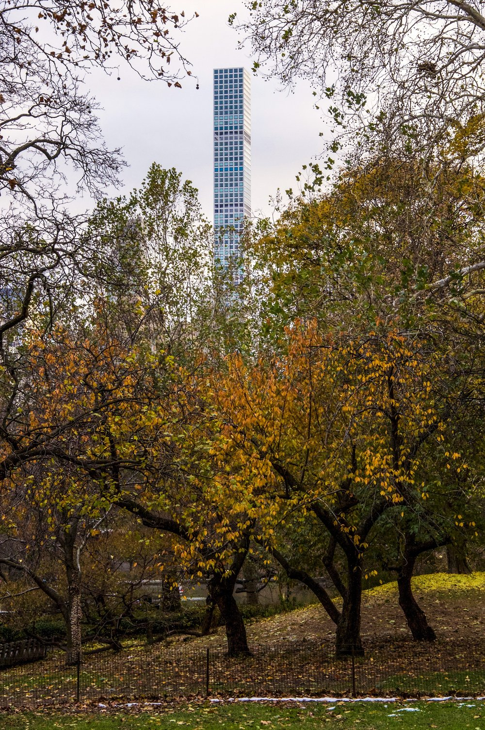 @ 432_Park_Avenue_Central Park_autumn trees_11.17.18_Photo © 2018 Joseph Kellard:kellardmedia.com.jpg