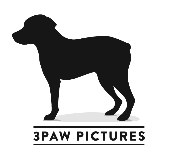 3Paw Pictures