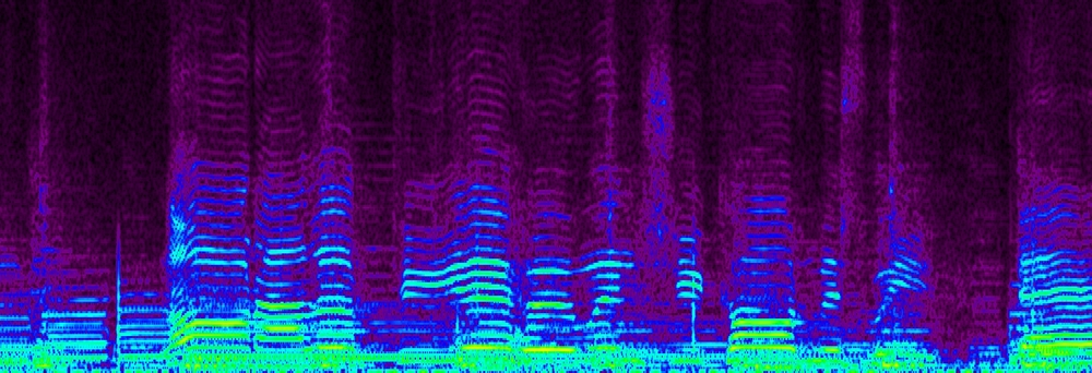 Spectrum editor view of Hank Williams audio file