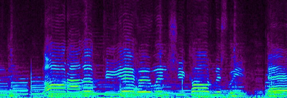 Spectrum editor view of Hank Williams audio file