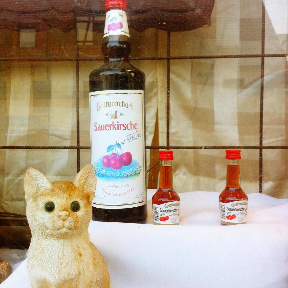 Berlin Cats 3.jpg