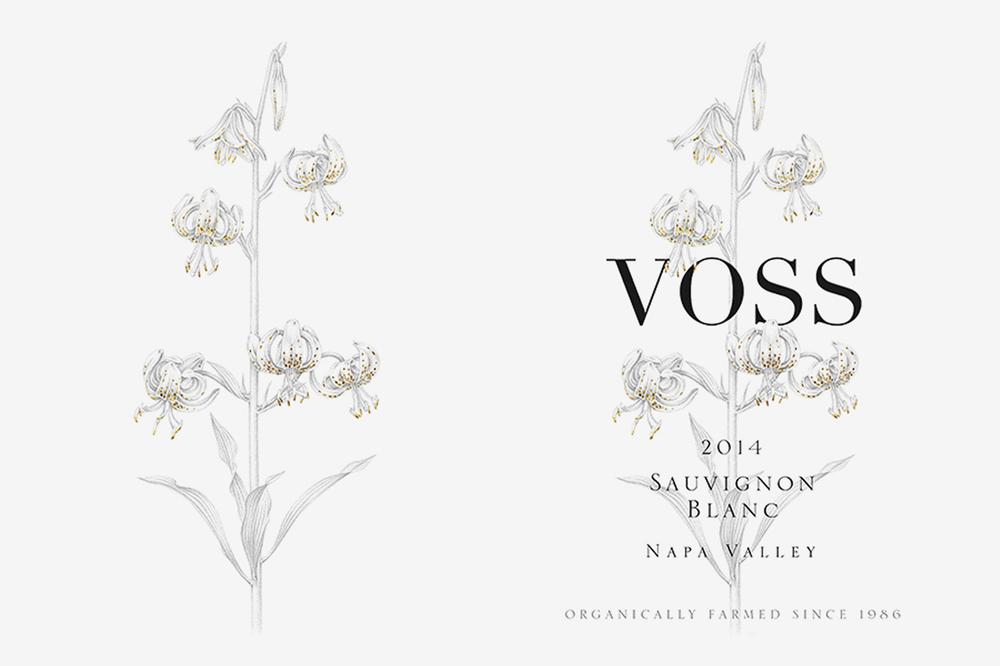 LaurieMillotte-Voss-2-web.jpg