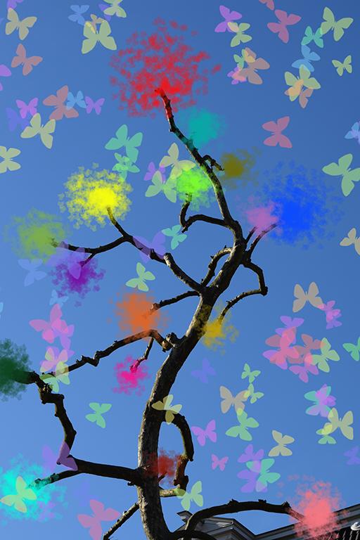Butterflies-sm.jpg