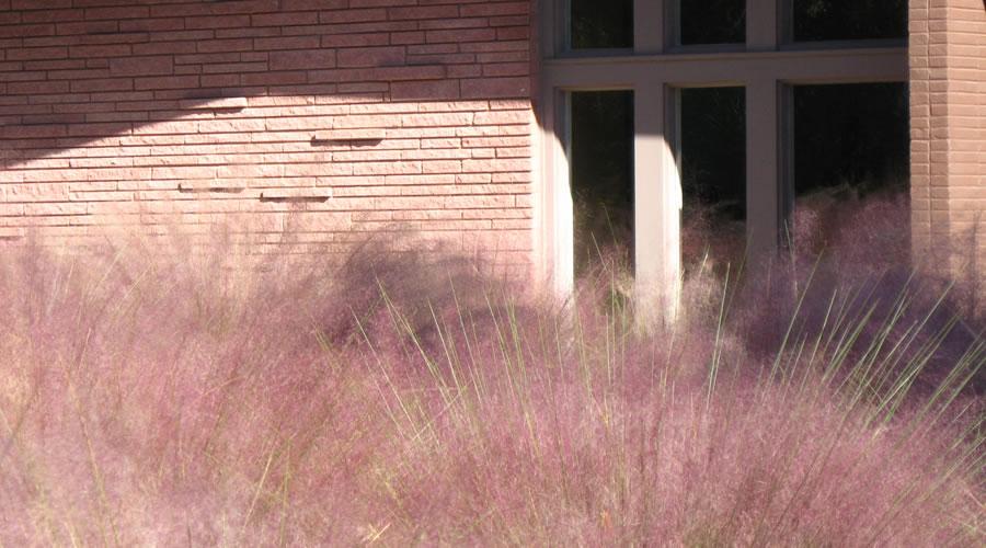Residence in East Kessler Park Dallas TX
