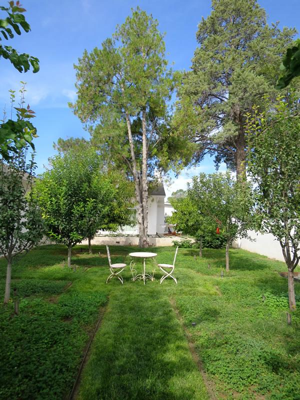 Orchard area