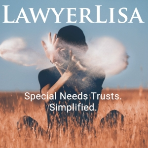 Special Needs Trusts. Supplemental Needs Trusts. Third Party Trusts. d4A trusts. LawyerLisa