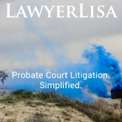 Probate Court Litigation