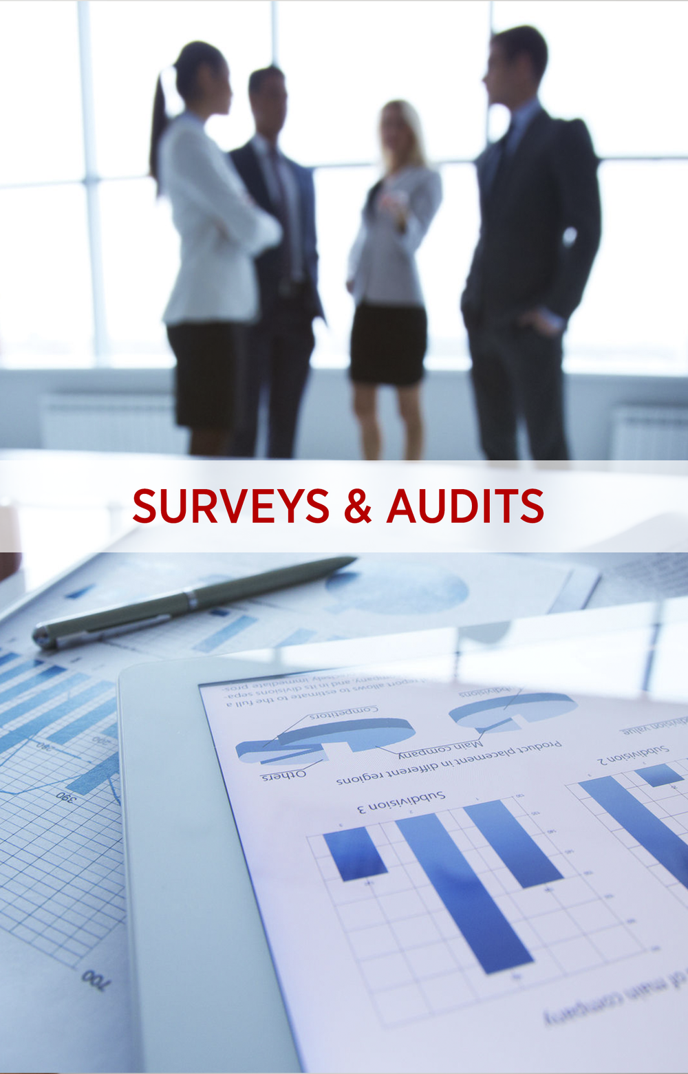 Surveys and Audits.png