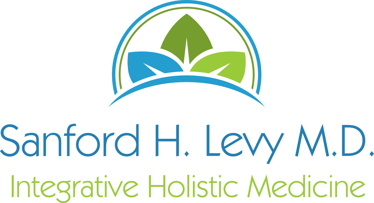 Anxiety, Stress, Depression - A Supplement Approach — Sanford H Levy