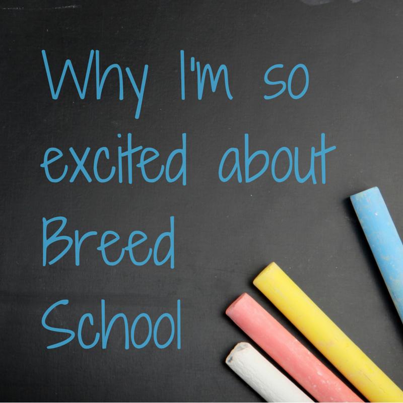 breedschool.jpg