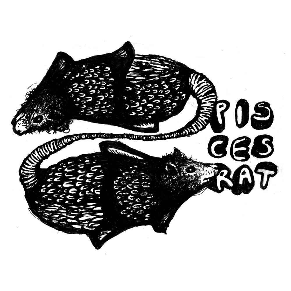 RAT_PISCES.jpg