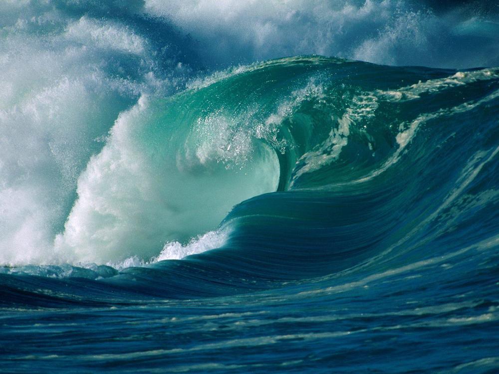 16 tsunami 35338489.jpg