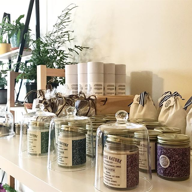 Everything looks cute under a cloche. #fact #putaclocheonit #botanicalcandles #staycurious #curiousnatureapothecary #plantalchemy #naturalperfumery #naturalsoycandles