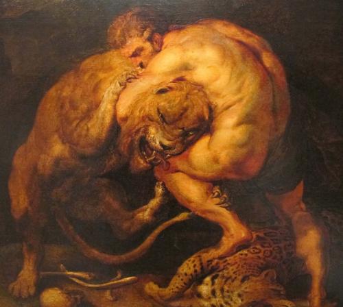 Nemean Lion -Peter Paul Rubens