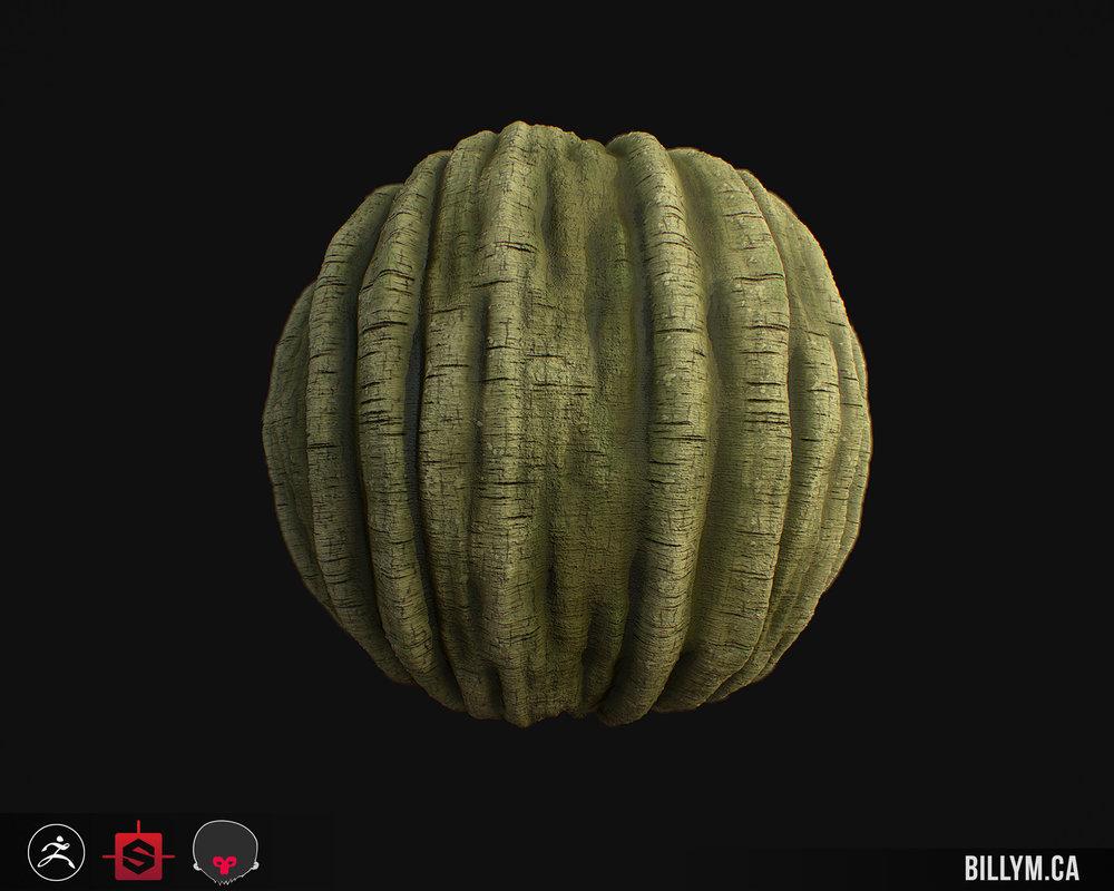 billy-matjiunis-treebark-02c.jpg