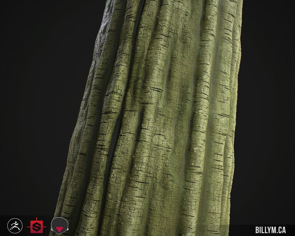 billy-matjiunis-treebark-01d.jpg