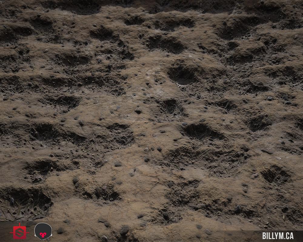 MuddyDirt_Wide_03a.jpg