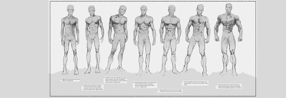 evander body_comp.jpg