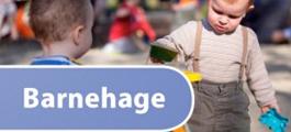 Norsk pluss barnehage