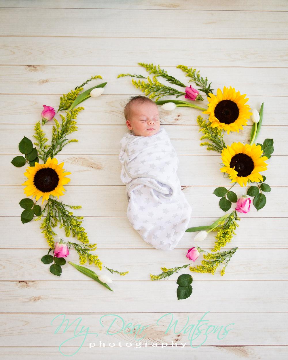 Baby EM previews-16.jpg