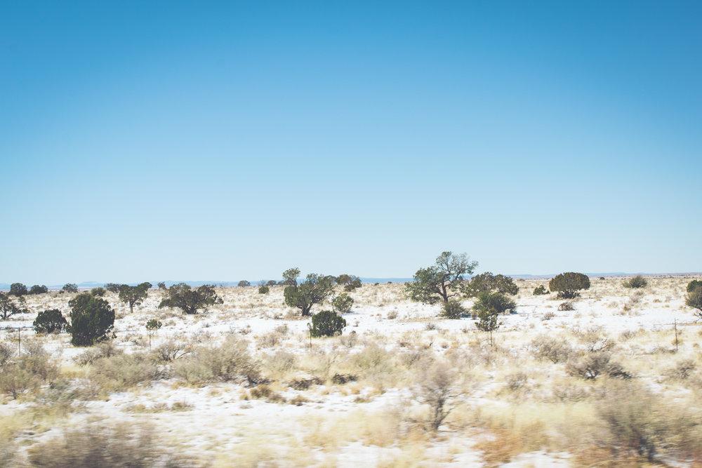 02222018 Grand Canyon-46.jpg