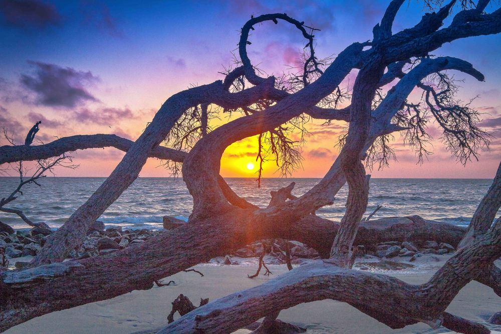 "Photo Credit: ""Sunrise at Driftwood Beach"" courtesy of Achilles Morin Photography Galleries   http://www.achillesmorin.com/"