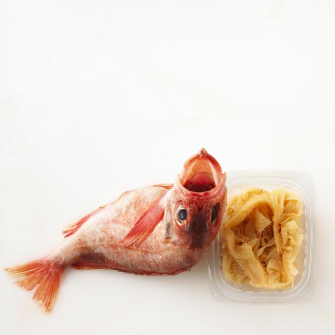 Rotten food still life of fish looking at camera.