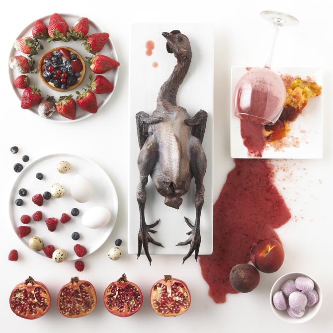 Rotten food still life of a black duck and spilled pink smoothie.