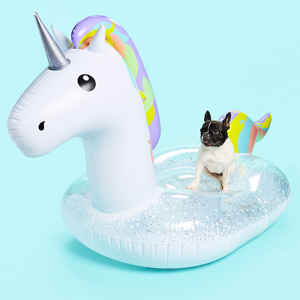 Conceptual still life image of a dog on a unicorn pool float.