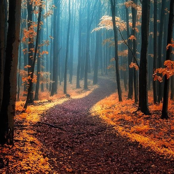 Caminos impresionantes