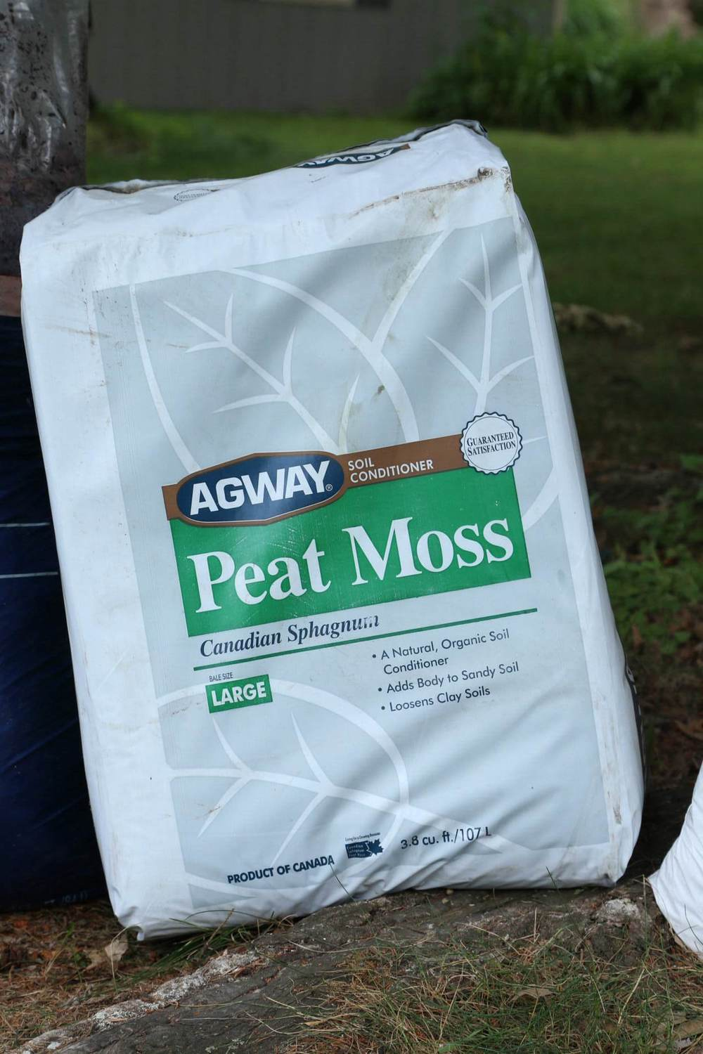 Bale of peat moss. You can most certainly get a smaller amount if only doing a single batch or two.