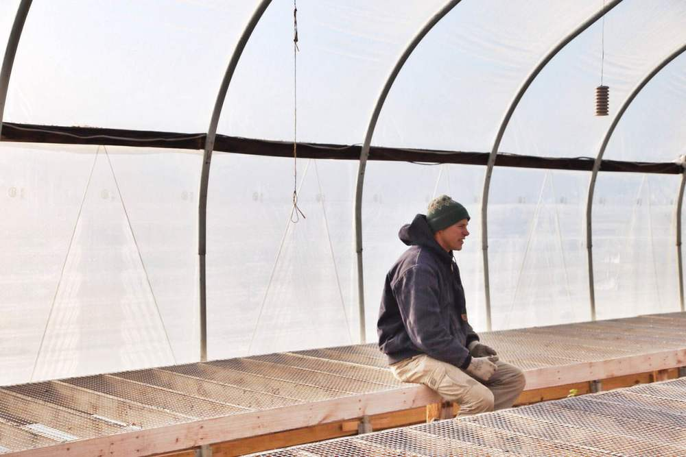 Will Brownback in one of the seedling greenhouses, a welcome place on a cold day.