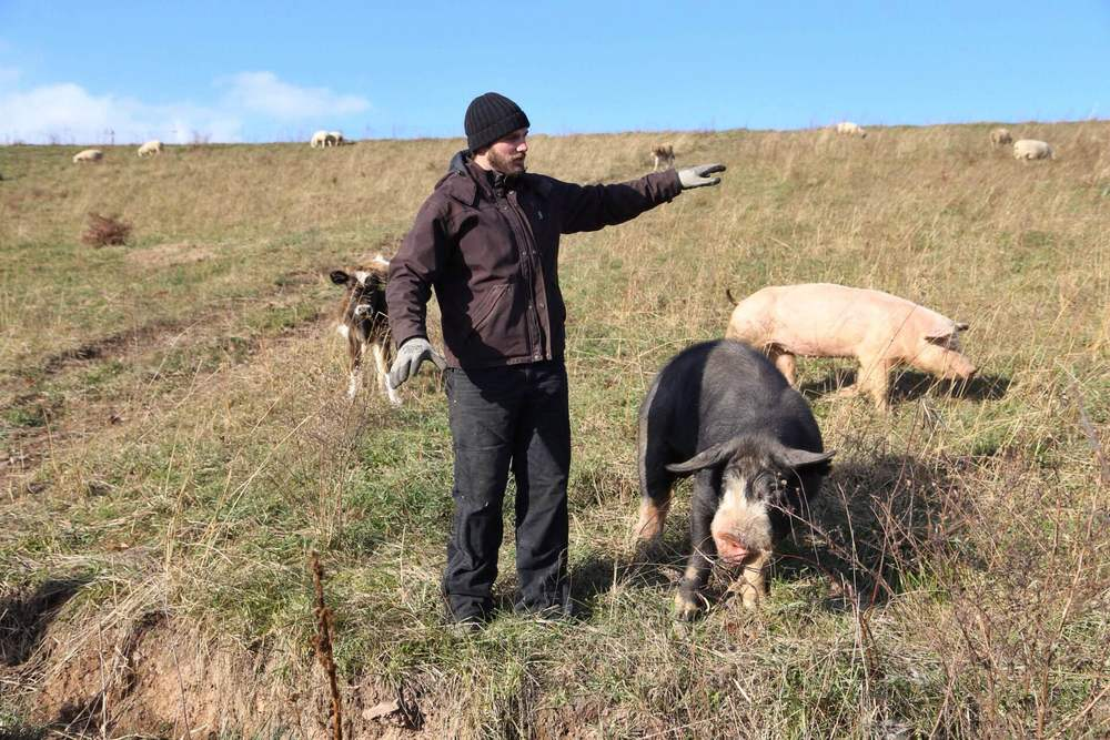 Brooks and his pig explaining his keyline swale. He did the explaining, the pig was just there to look pretty.