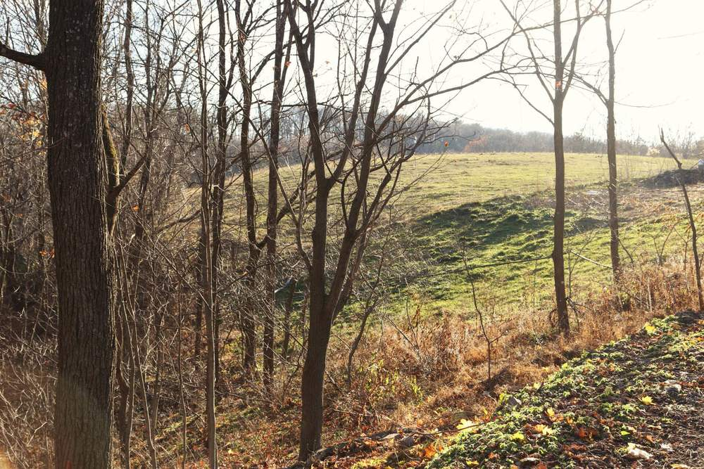 A view of one of the pastures.
