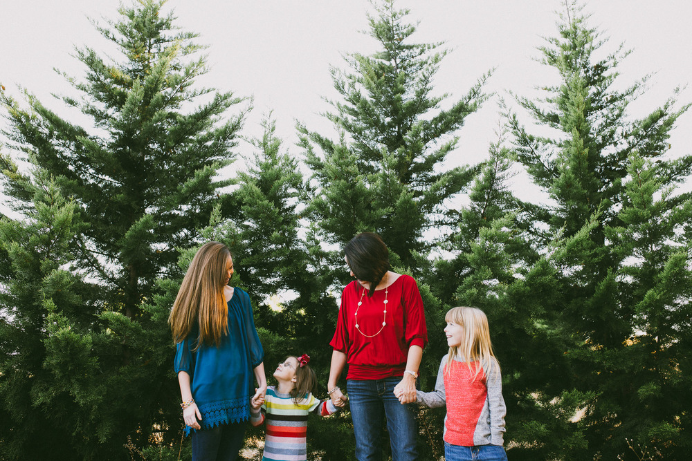 haliejohnsonphotography-christmasminis-16.jpg