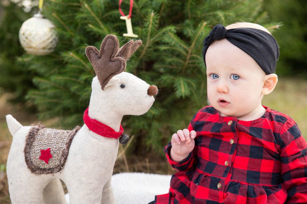 Blog-Davis-HolidayMini2017-4654-.jpg