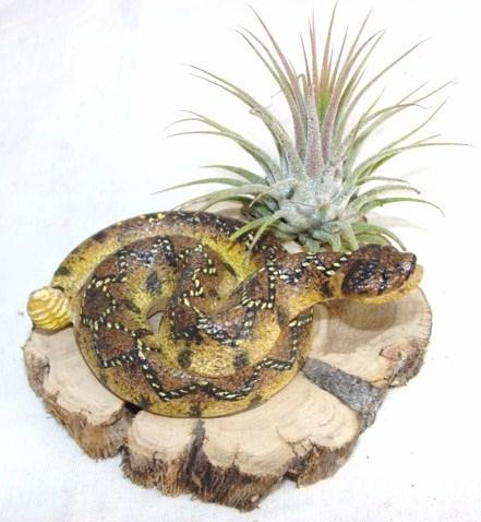 #379 Rattlesnake