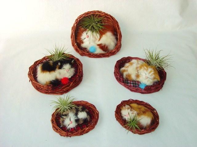 Fuzzy Cats #439 sm, #411 med, #412 lg