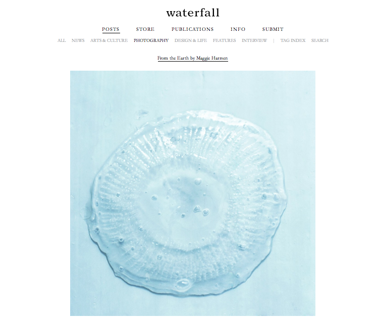"Waterfall: From the Earth by Maggie Harrsen   A mix selected works from two series ""Solidago"" and ""Kanoa"" by New York based photographer Maggie Harrsen. She takes her practices in the connection with nature life and all living creatures. ""As all living beings carry an individual etheric vibration, these works aim to study this single yellow flower, its essence and healing capacity."" - Maggie Harrsen on Solidago"