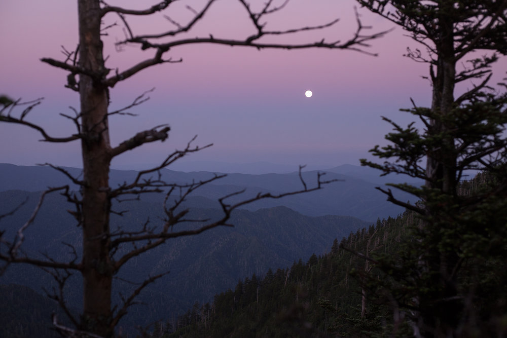 Moonrise_web.jpg