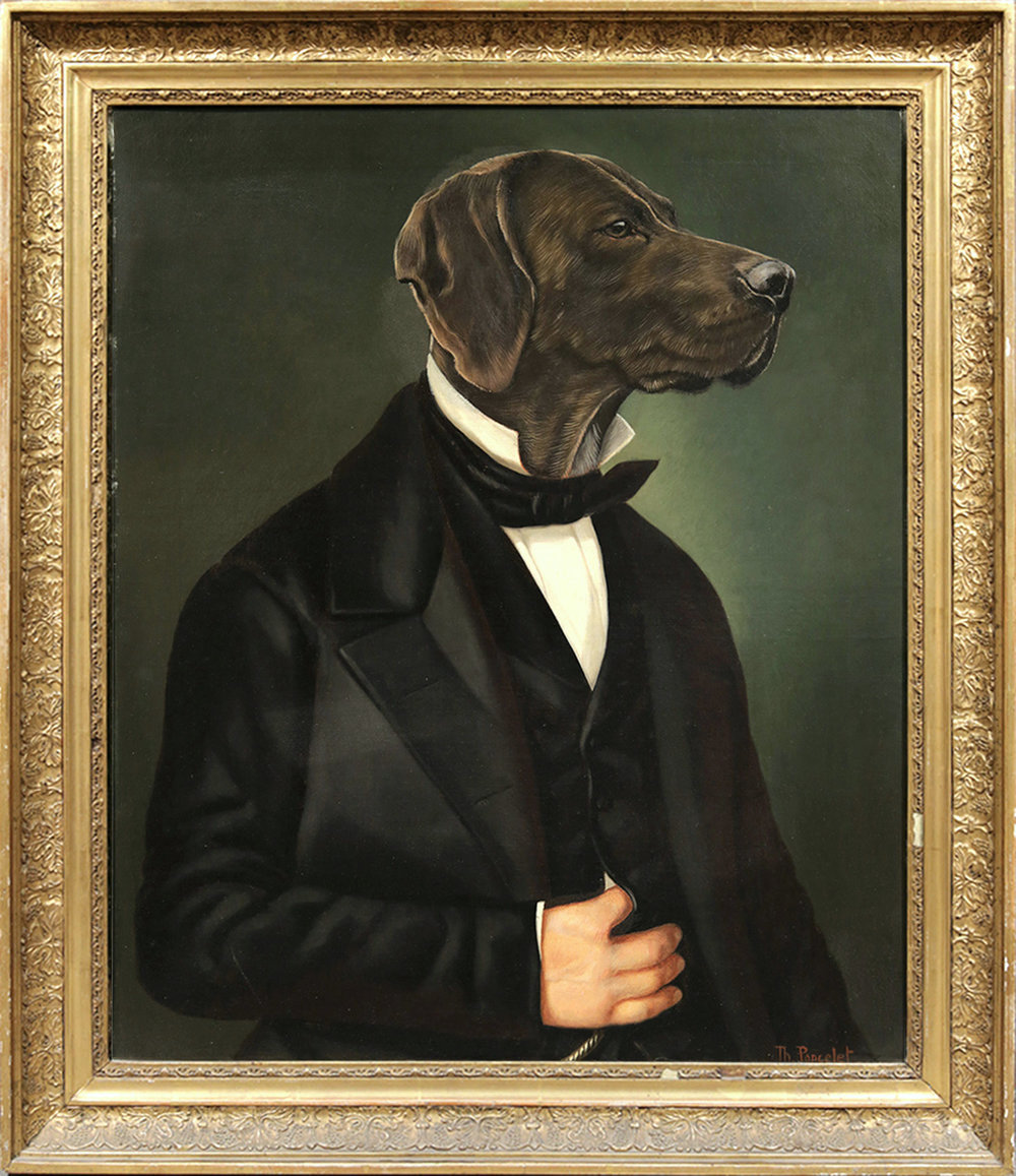 The Gentleman Labrador, 20th Century