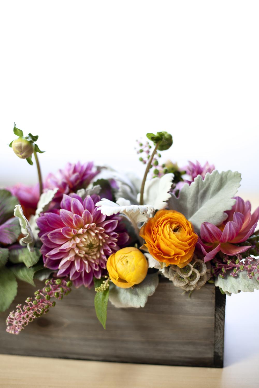 flora bella | louisa marion