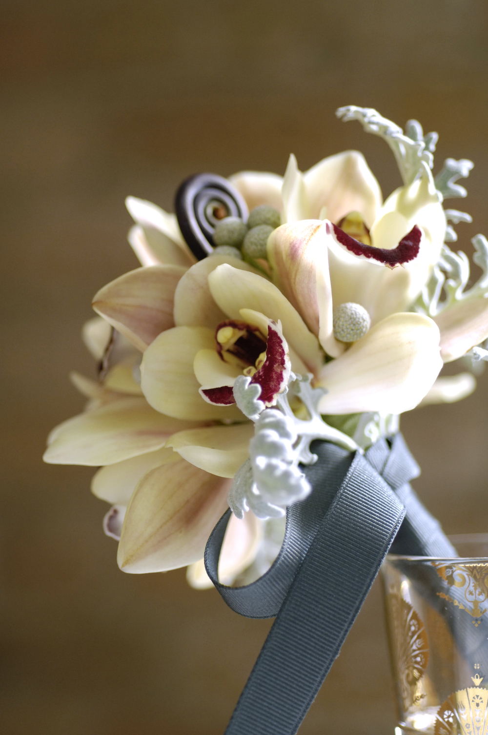 flora bella | stephanie colgan