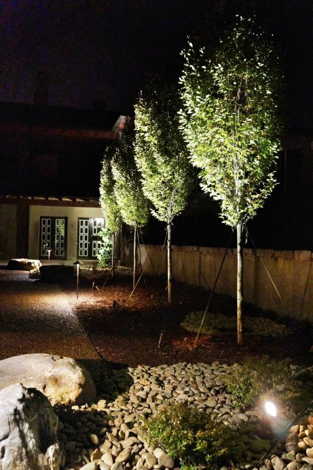 La Bastide night pic hornbeams.JPG