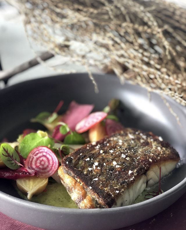 Our new plated menu is here... ft. pan roasted barramundi, fennel, pickled golden beets, hazelnuts and red amaranth. A classic plated fish dish where the hero is a king of the streams, rivers, lakes, billabongs, estuaries and coastal waters.  Just because plated menus were done in the past, doesn't mean they need to be outdated and boring; we make the dishes you actually want to eat. Always xoxo DTM