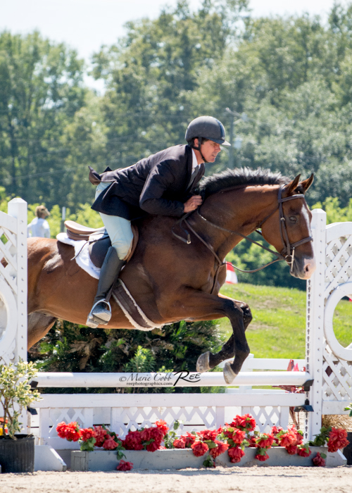 In the hunter ring with rider/trainer Dennis Murphy, Jr.