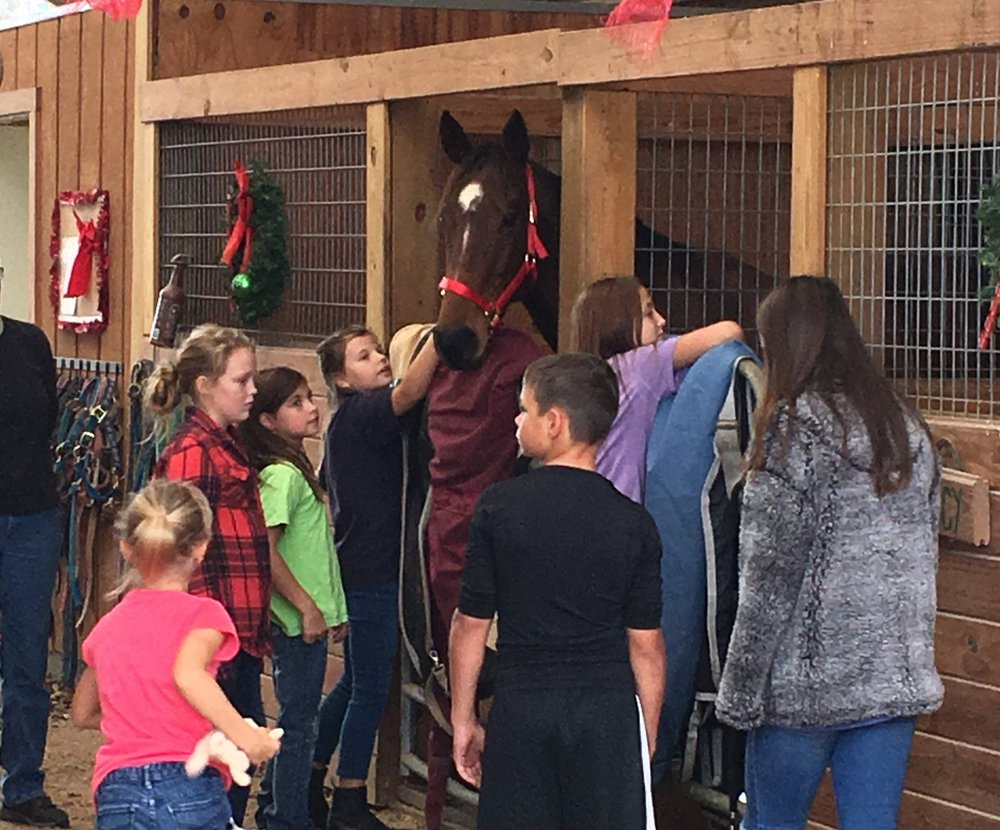 Shalane, sporting her new red Christmas halter, perked up quickly when the children came to welcome her home.