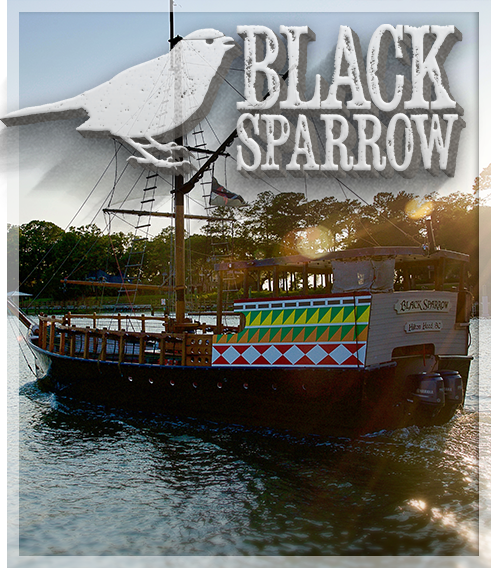 Custom Pirate Ship