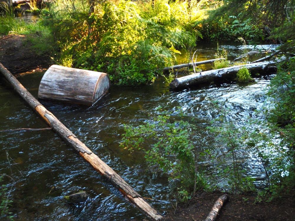 Jack Creek